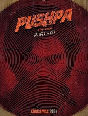 Allu Arjun's 'Pushpa: The Rise' to release this year on Christmas