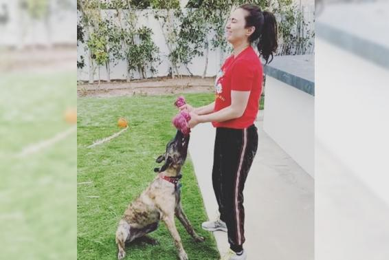 Lockdown diaries: Preity loves to work out with her pet dog