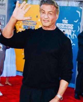 Sylvester Stallone bows out of 'Expendables' franchise