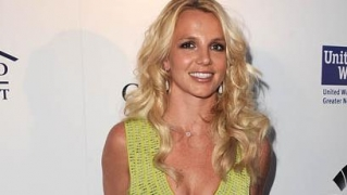 Not made for the industry: Britney Spears